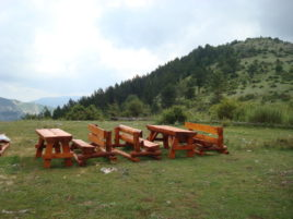 These wooden tables and benches are suitable for picnic.