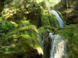 Малки водопади близо до екопътеката.