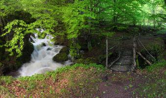 На места ще трябва да минете през дървени мостове.